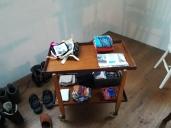 Y Llyfrgell Achub The Saved Library